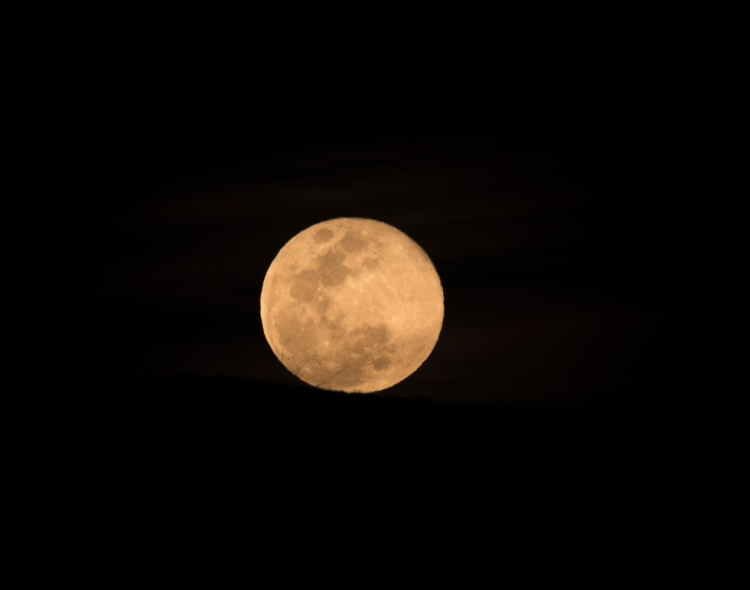 madera campsite javelina moon stars-6
