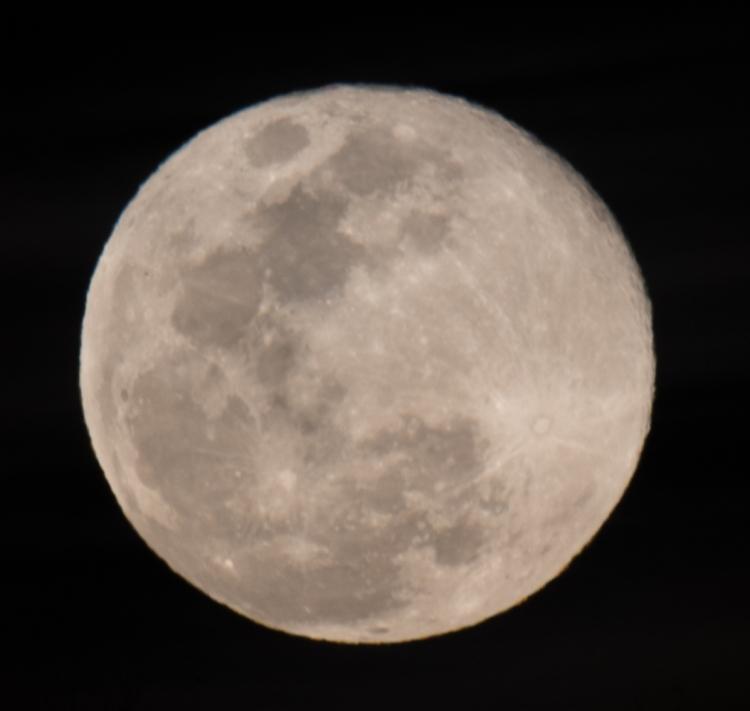 madera campsite javelina moon stars-8